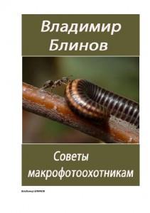 Советы макрофотоохотникам - Владимир Блинов